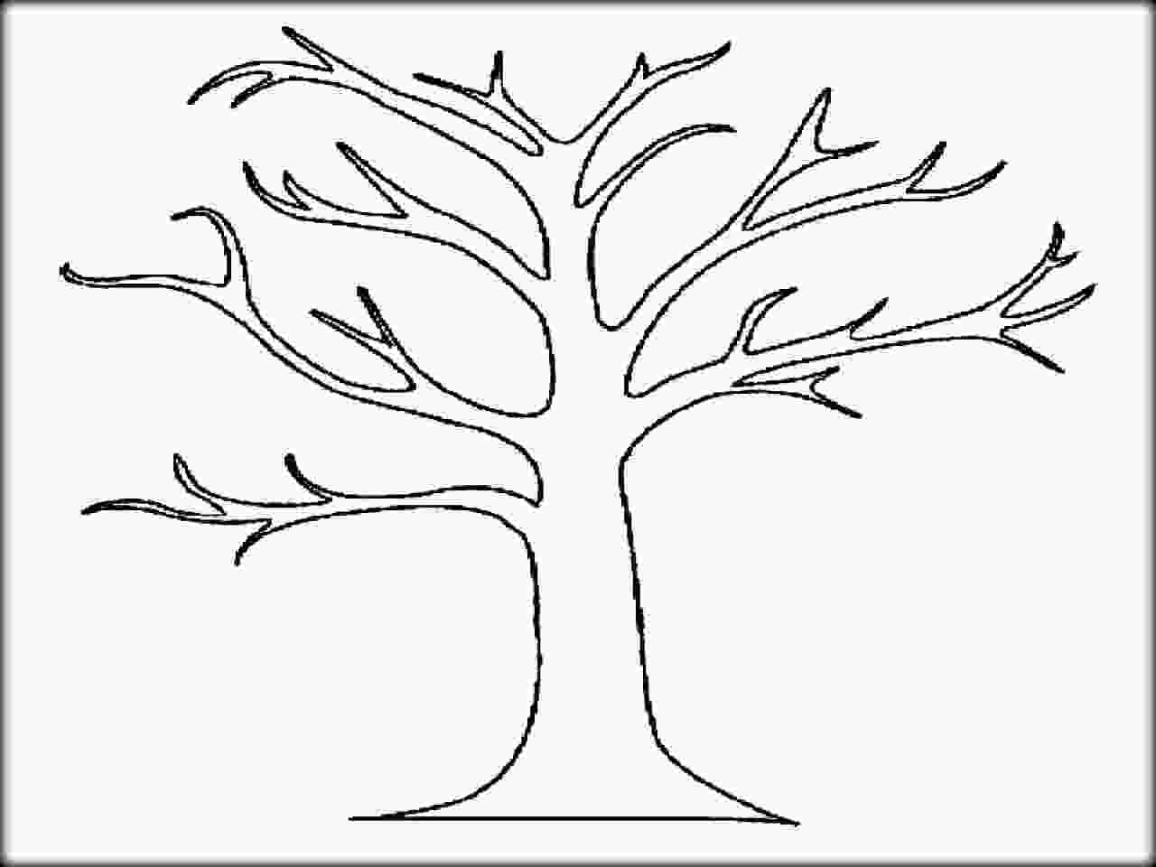 bare tree coloring pages autumn trees drawing at getdrawingscom free for