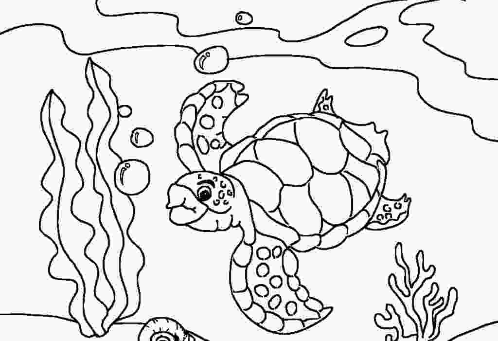 coloring page of turtle free printable sea turtle coloring pages for kids 1
