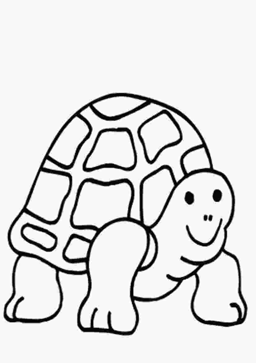 coloring page of turtle free printable turtle coloring pages for kids animal place
