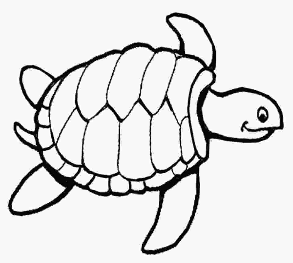 coloring page of turtle get this online turtle coloring pages to print swsyq