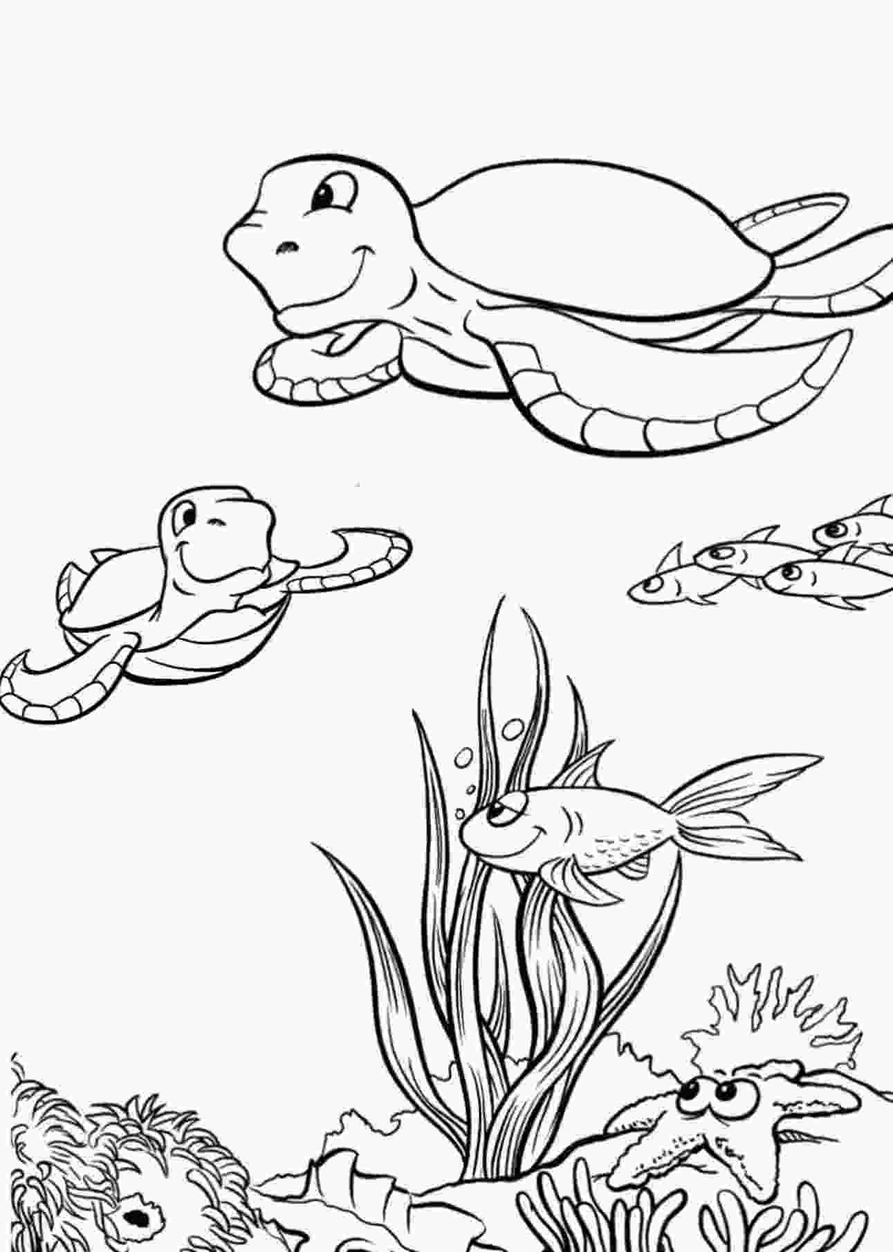 coloring page of turtle sea turtle coloring pages 360coloringpages 1