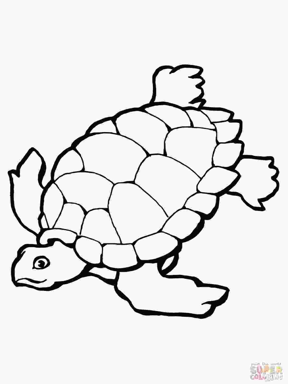 coloring page of turtle sea turtle coloring pages to download and print for free