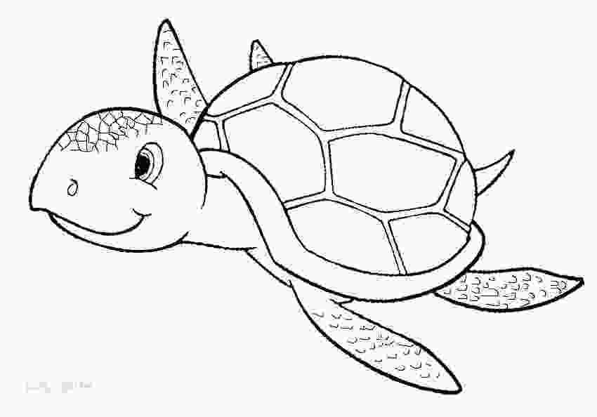 coloring page of turtle sea turtles coloring pages coloring pages