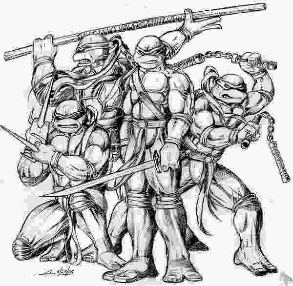 how to draw teenage mutant ninja turtles sketch please 187 teenage mutant ninja turtles
