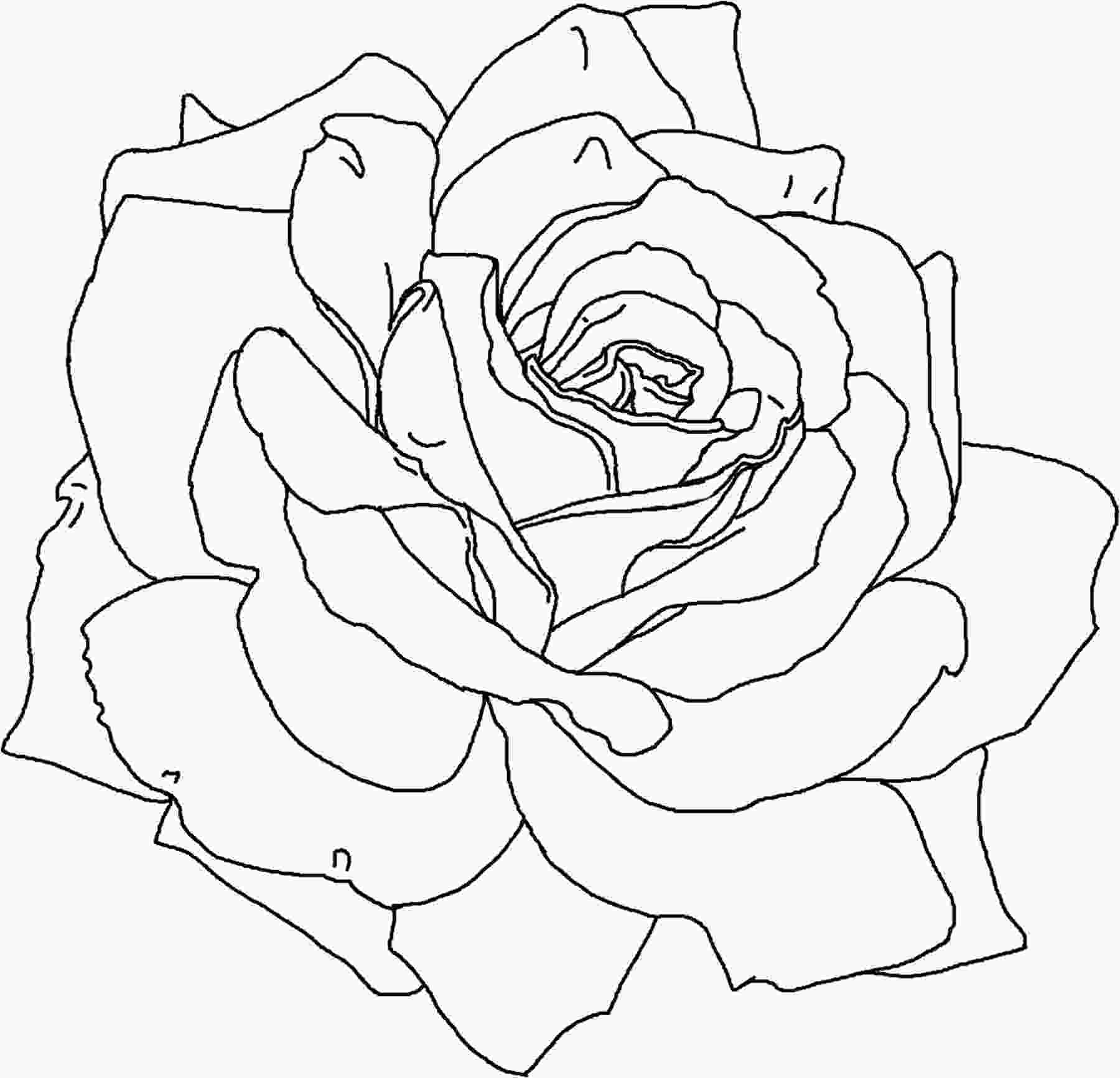 flower color page free printable flower coloring pages for kids best 6