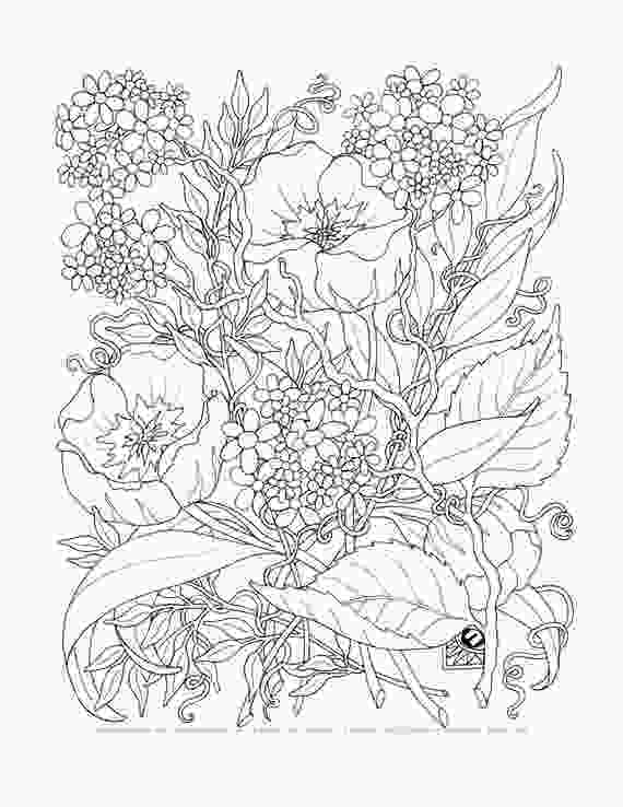flower nature coloring pages adult coloring a tangle of flowers set of 8 by emerlyearts