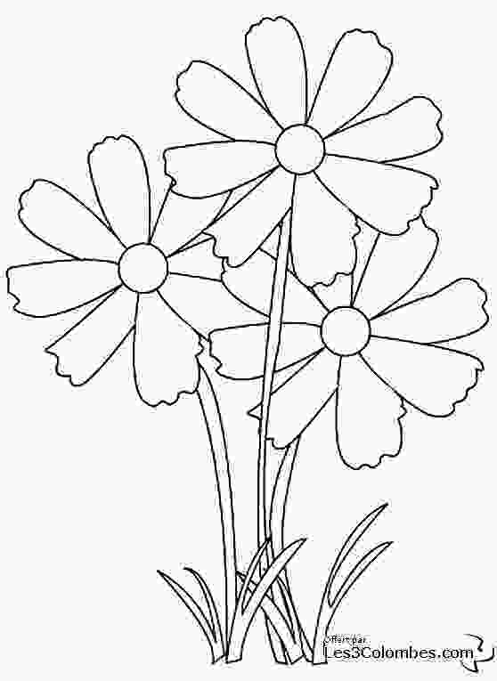 flower nature coloring pages flowers 36 nature printable coloring pages