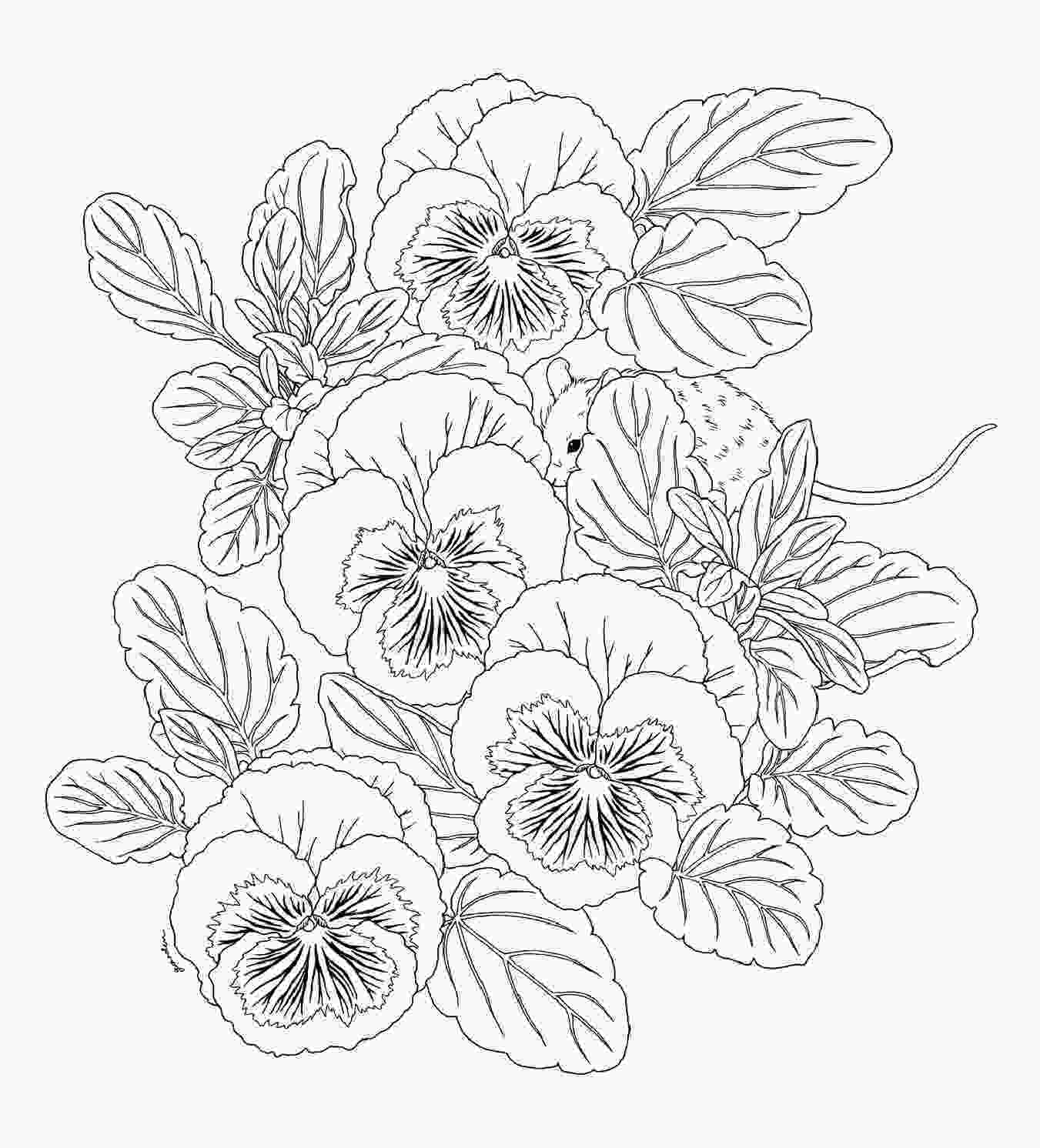 flower nature coloring pages harmony of nature coloring pages to print animals