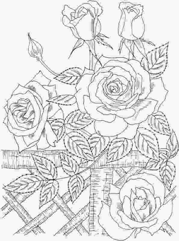 flower nature coloring pages nature colouring sheets gianfredanet