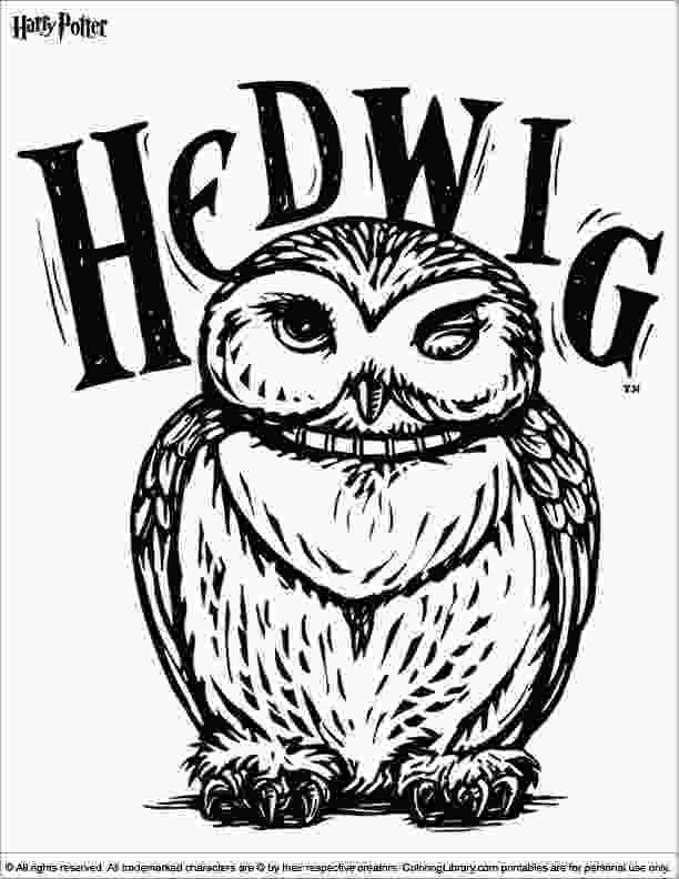 harry potter house coloring pages 24 best harry potter images on pinterest harry potter