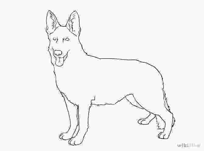 how to draw a realistic dog step by step free line drawing dogs download free clip art free clip
