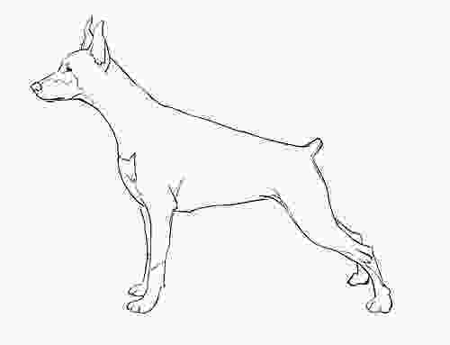 how to draw a realistic dog step by step pencil sketches and drawings how to draw a realistic dog