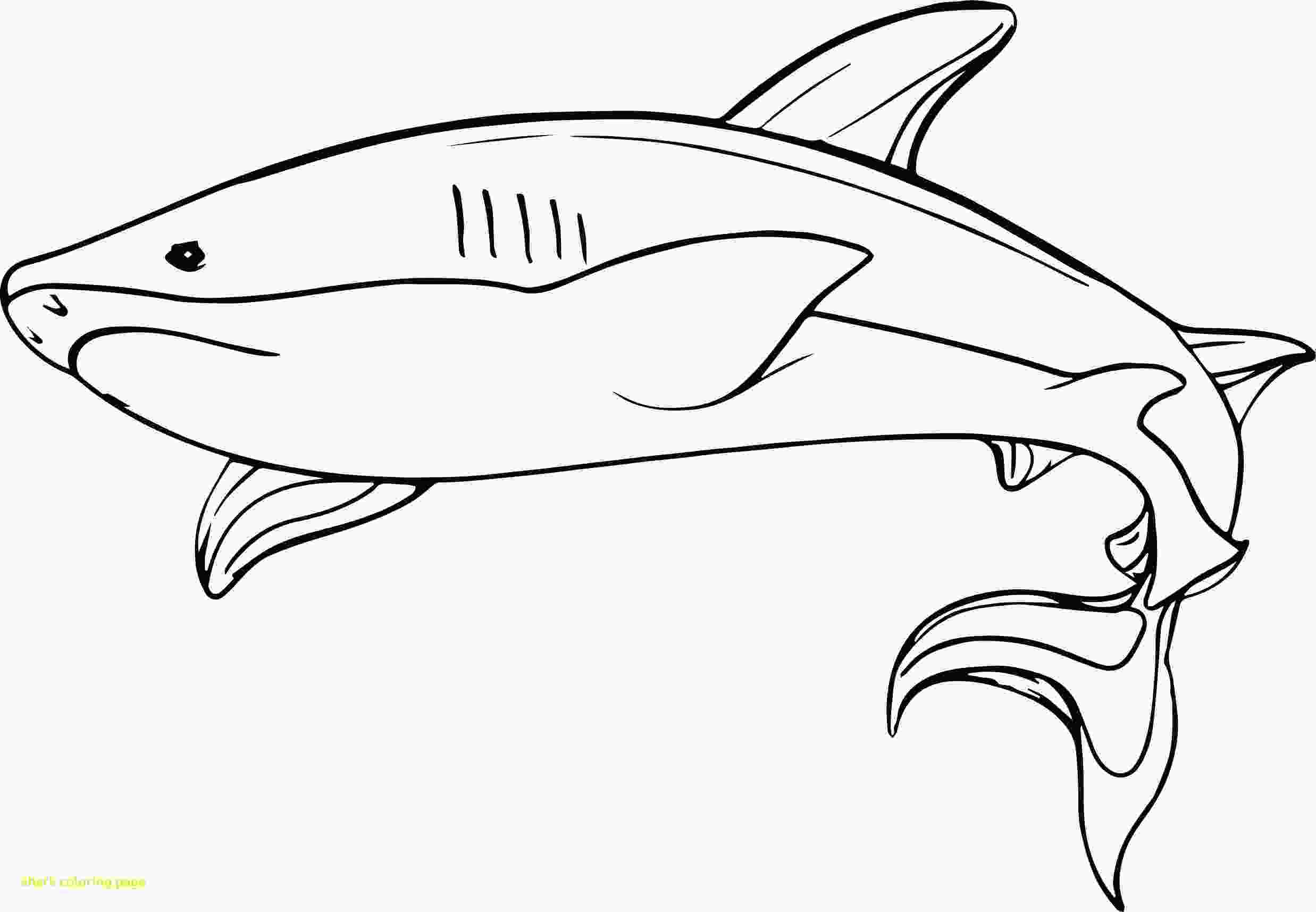 mako shark coloring page spectacular printable coloring pages for kids shark