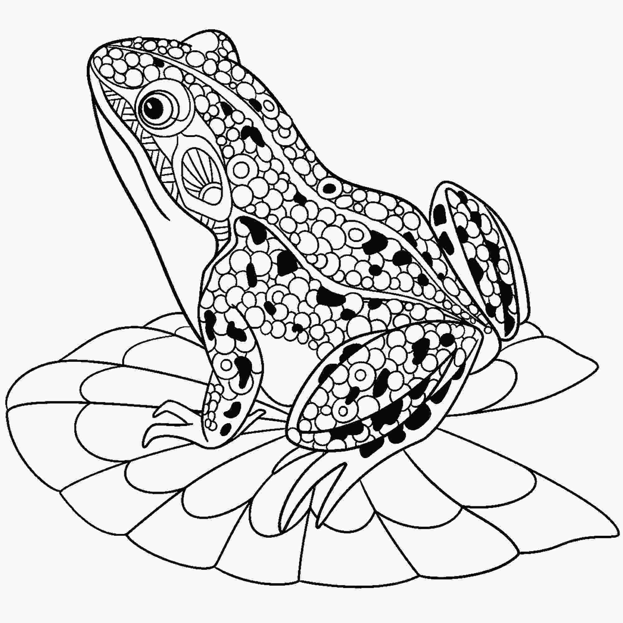 pictures of frogs to color frogs free to color for children frogs kids coloring pages