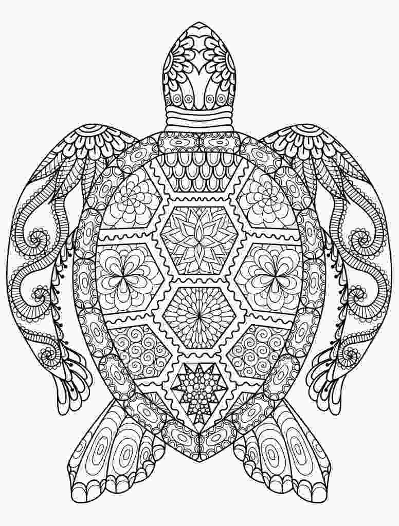 animal coloring pages online adult coloring pages animals best coloring pages for kids 1
