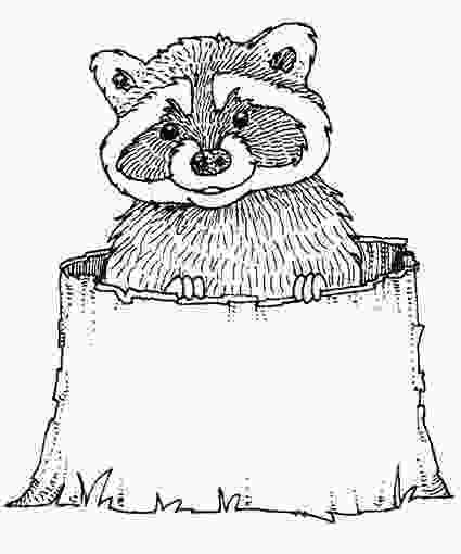 baby raccoon coloring page raccoon coloring pages downloads and sketches shopkins