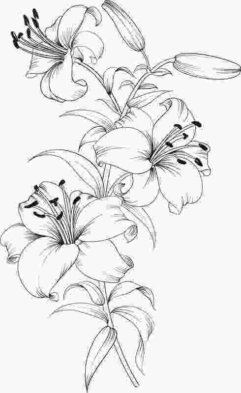 coloring flowers with colored pencils pin by valarie ante on color me sweary coloring pages