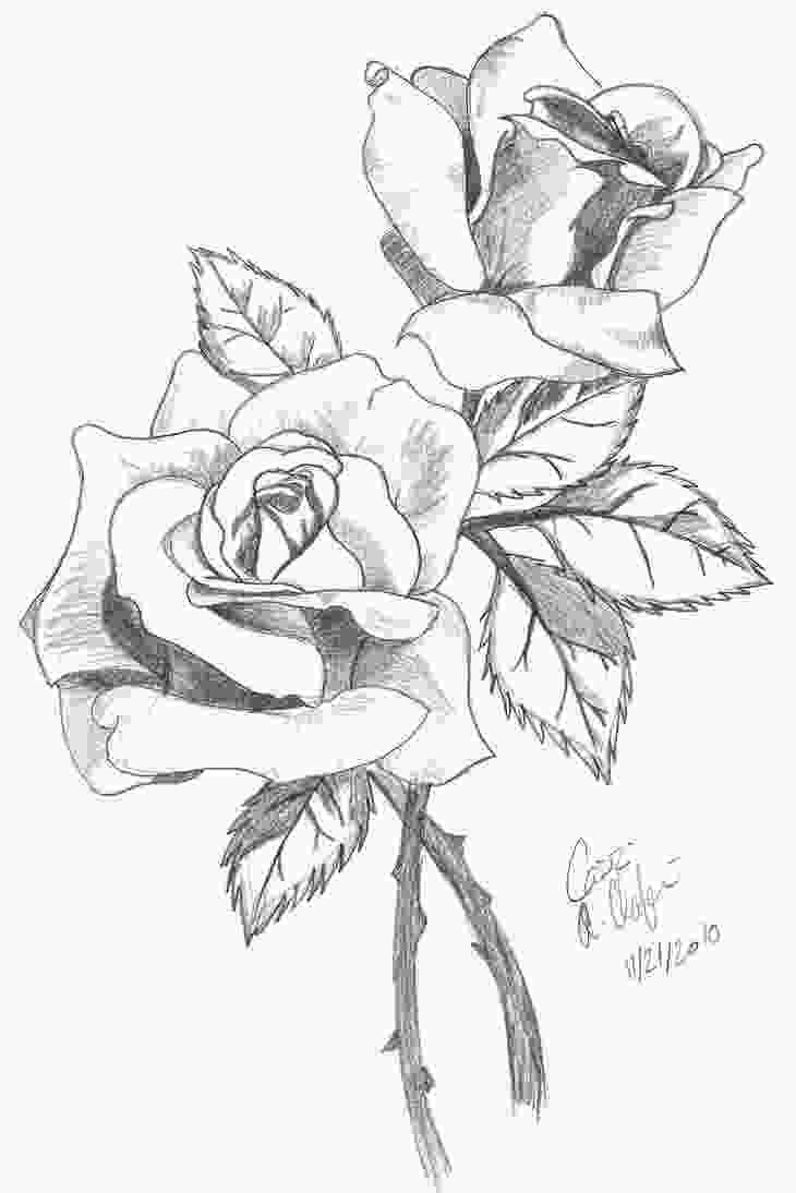 coloring flowers with colored pencils rose drawings in pencil rosesshaded by ashton18 tatoo
