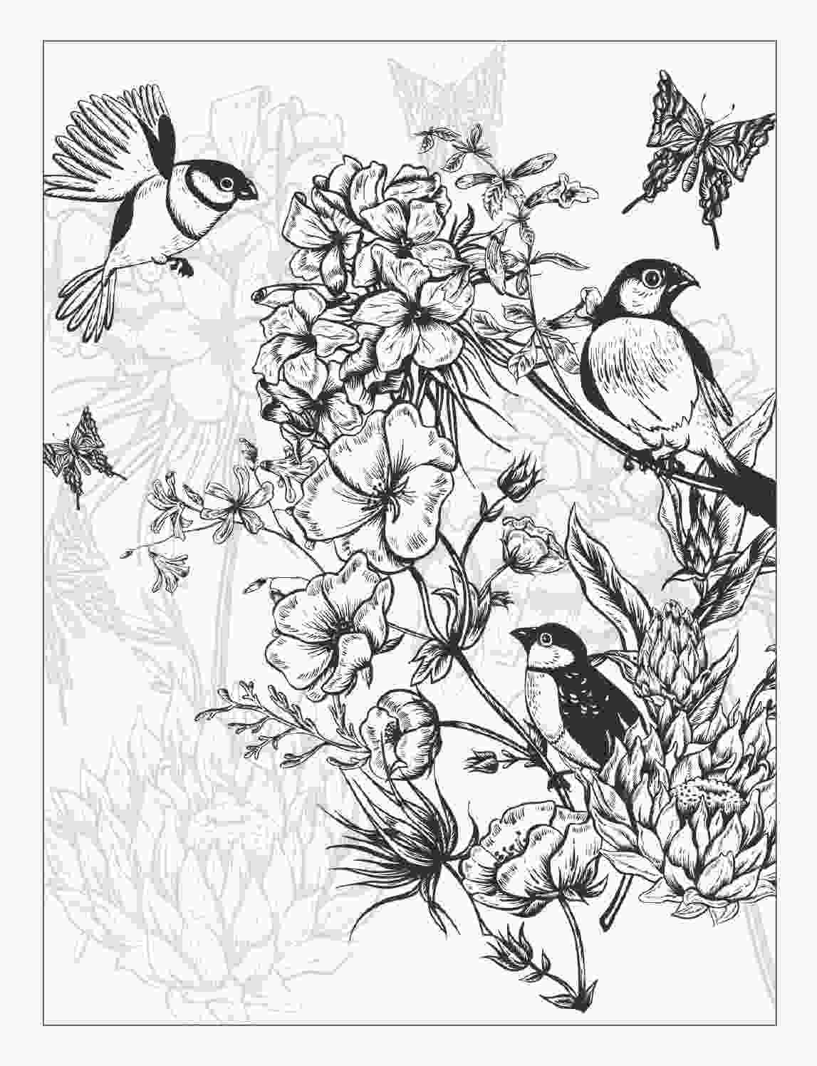 beautiful flower coloring pages beautiful flowers detailed floral designs coloring book