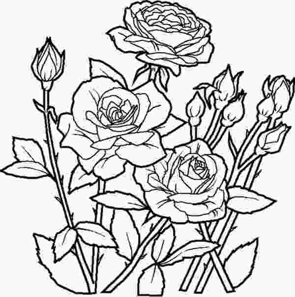 beautiful flower coloring pages elegant roses for beautiful flower bouquet coloring page