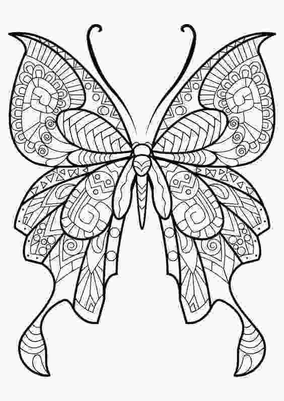 coloring butterfly wings 40 free printable butterfly coloring pages