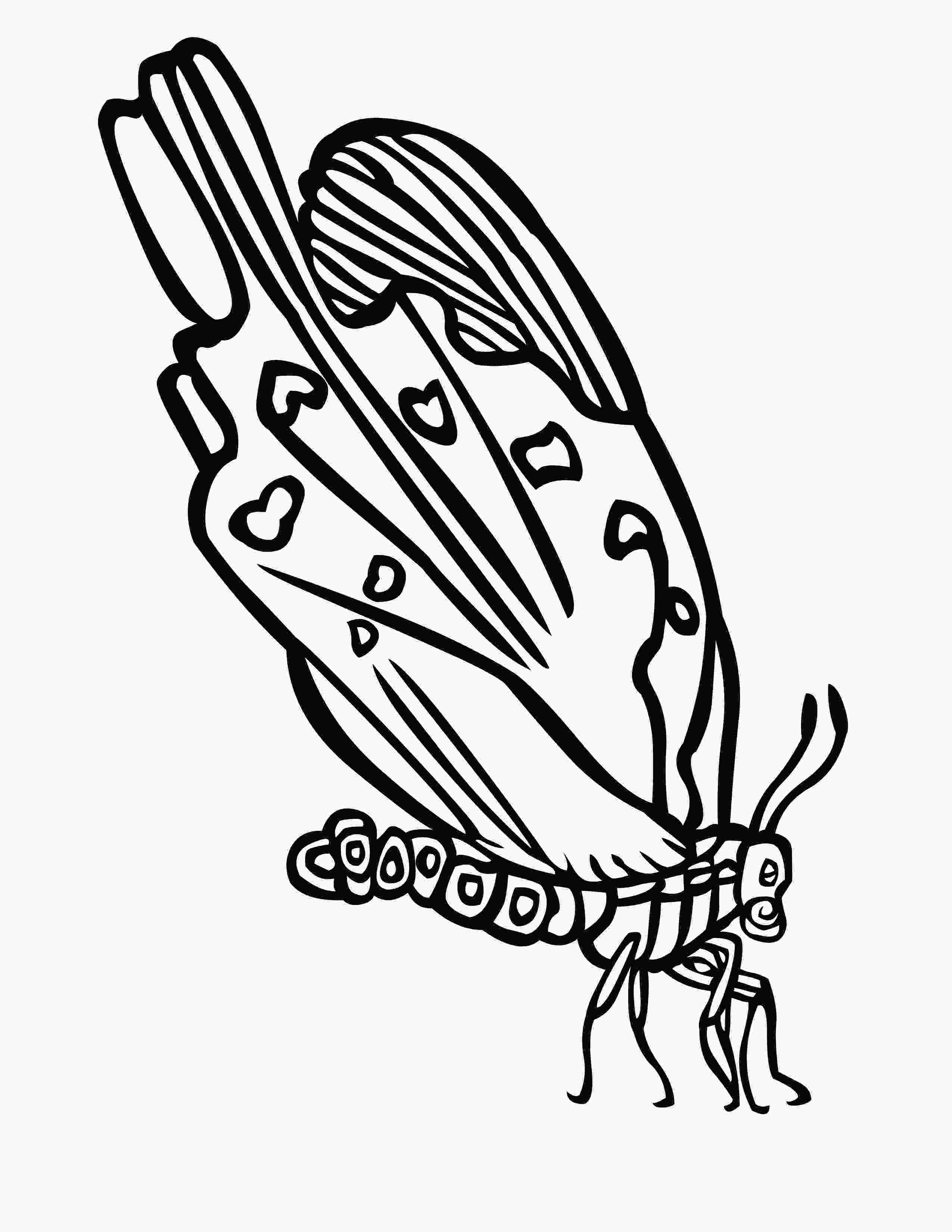 coloring butterfly wings butterfly wings coloring pages sketch coloring page 4