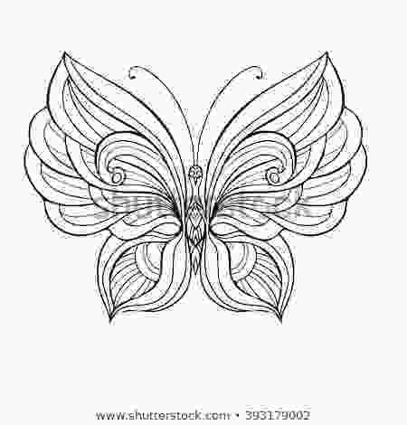 coloring butterfly wings colorful wings stock images royaltyfree images amp vectors
