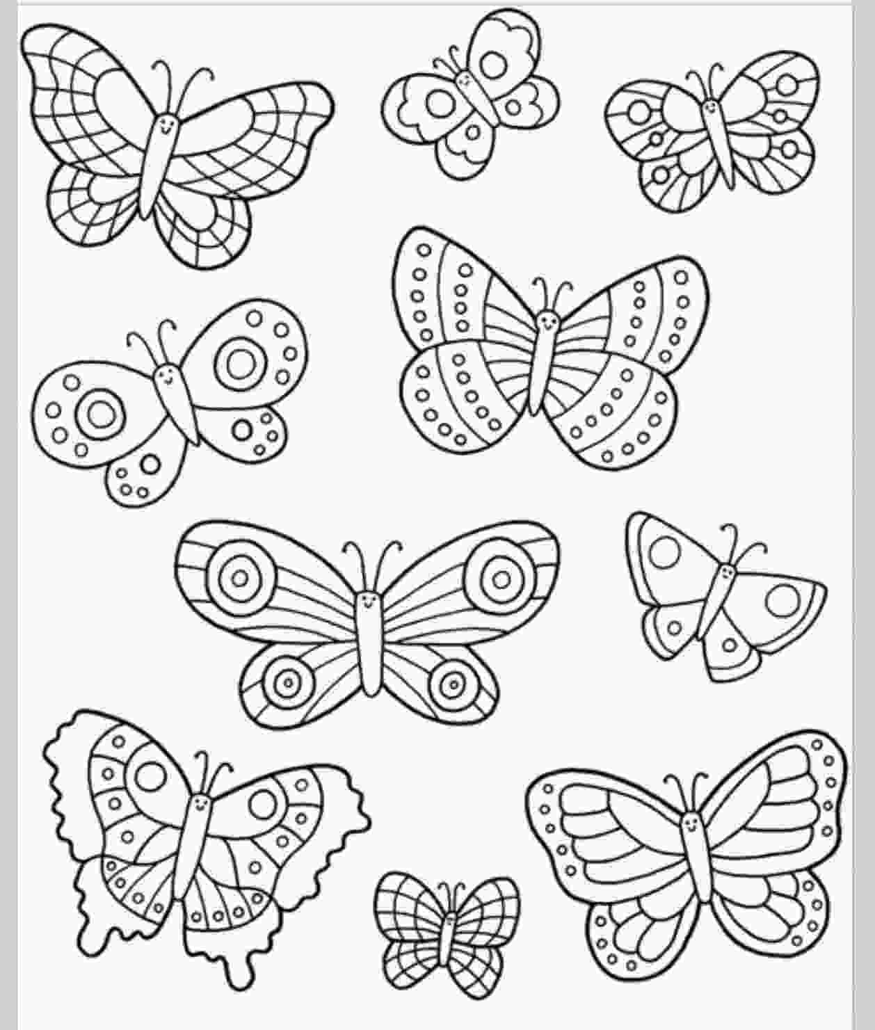 coloring butterfly wings easy to draw templates amp transfers koeke coloring