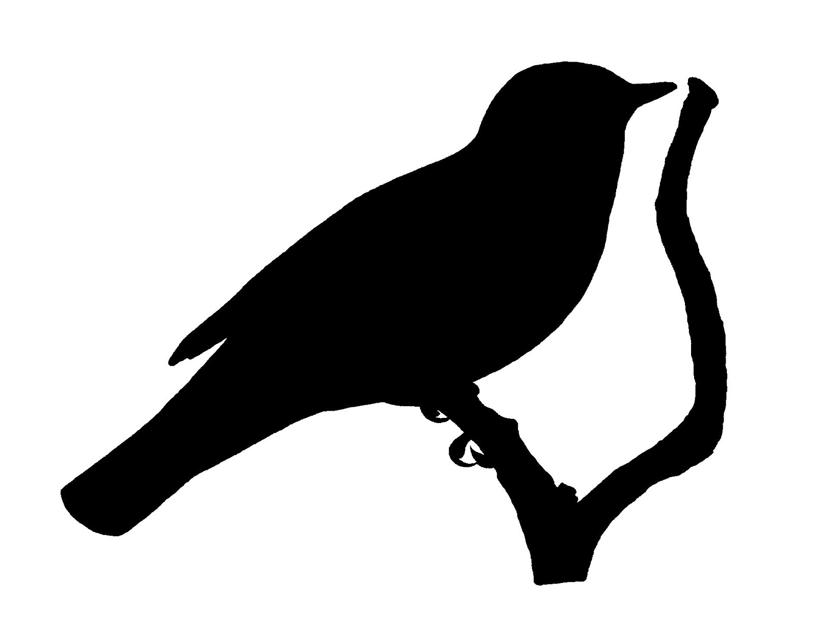 parrot silhouette bird in flight silhouette clipart best parrot silhouette
