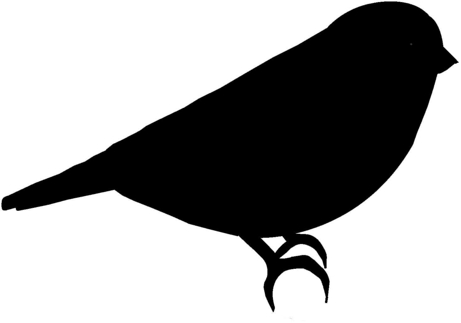 parrot silhouette parrot silhouette at getdrawingscom free for personal silhouette parrot