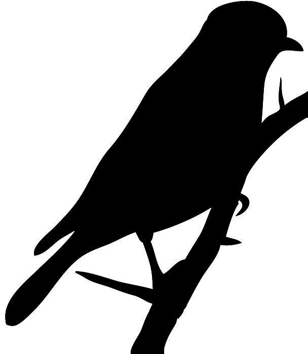 parrot silhouette transfer printables bird silhouettes swallows the parrot silhouette