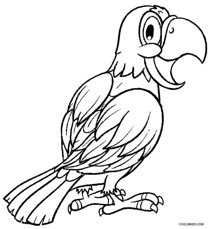 picture of parrot for colouring 25 cute parrot coloring pages your toddler will love to color picture for of colouring parrot