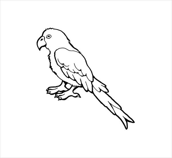 picture of parrot for colouring free printable parrot coloring pages for kids for colouring of parrot picture