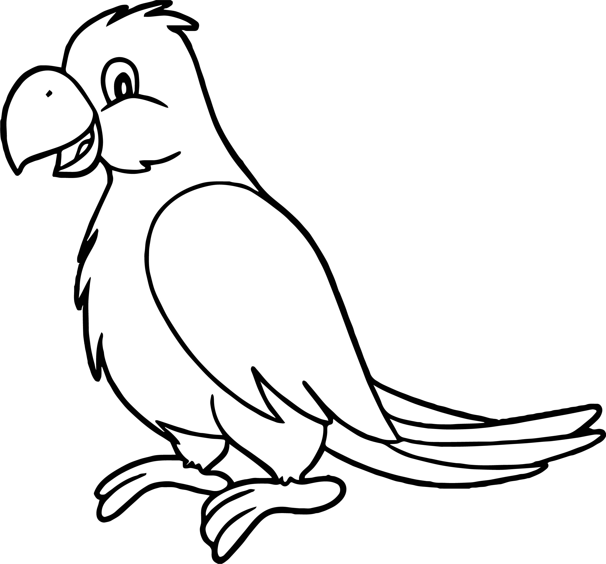 picture of parrot for colouring free printable parrot coloring pages for kids of picture colouring for parrot