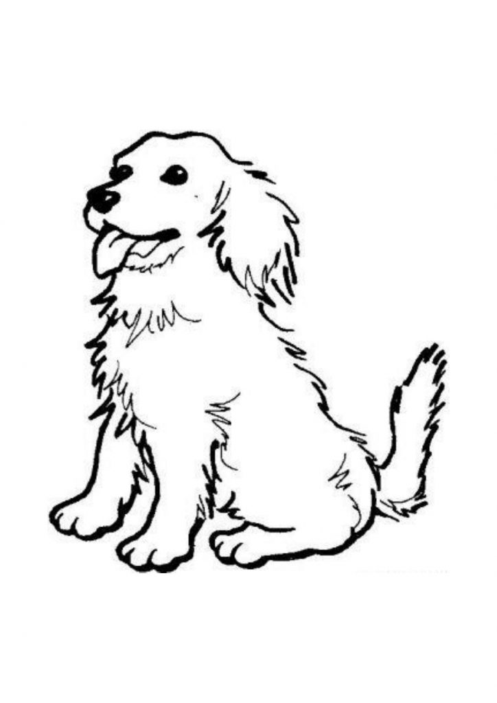 pictures to colour of dogs chihuahua dog coloring pages download and print for free to colour pictures dogs of