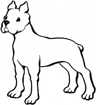 pictures to colour of dogs dog coloring pages for kids homepage animal kids colour to dogs pictures of