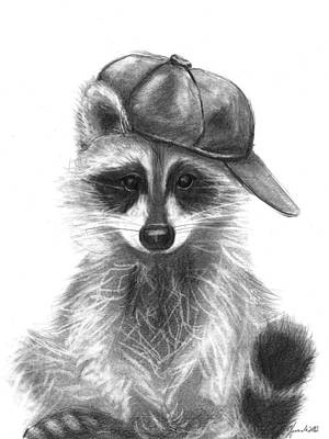 raccoon drawing raccoon drawings fine art america raccoon drawing