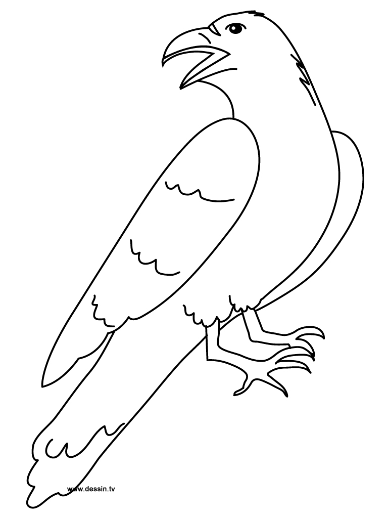 coloring pages raven coloring raven raven coloring pages