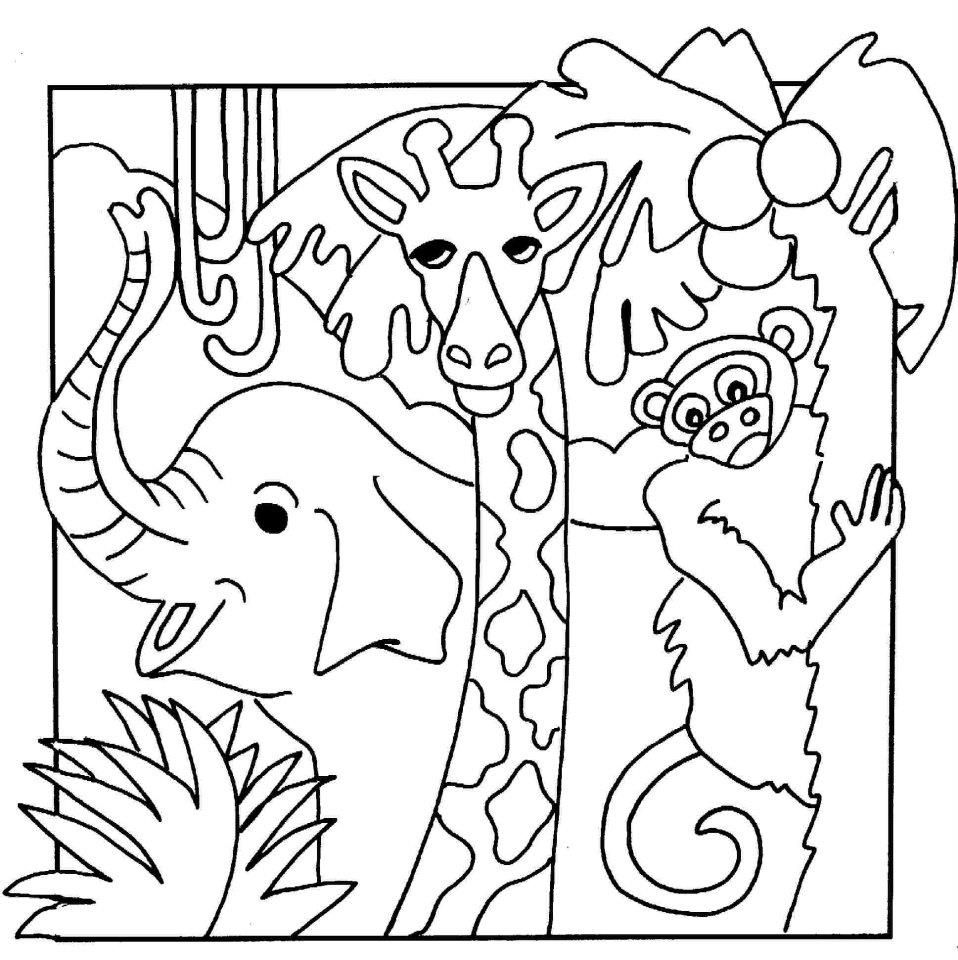 cute jungle coloring pages 9 jungle animals coloring pages pages coloring jungle cute