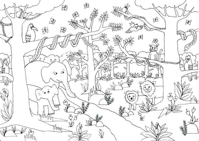 cute jungle coloring pages cute jungle animal coloring pages coloring kids jungle cute pages coloring
