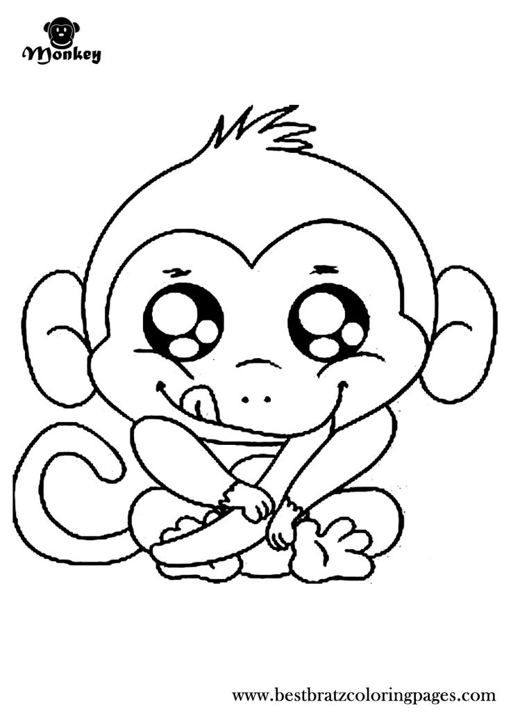 cute jungle coloring pages cute monkey coloring pages to download and print for free coloring cute pages jungle
