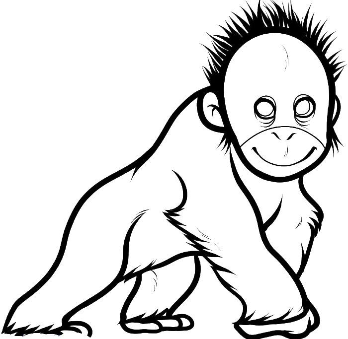 cute jungle coloring pages jungle animal coloring pages to download and print for free pages coloring cute jungle