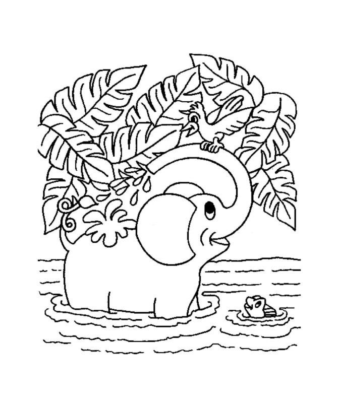 cute jungle coloring pages jungle animals coloring pages for kids coloring and pages jungle coloring cute