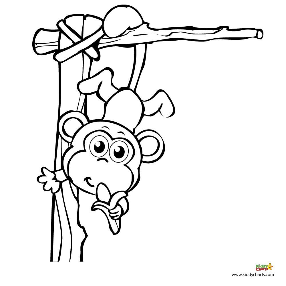 cute jungle coloring pages jungle coloring pages best coloring pages for kids coloring jungle cute pages