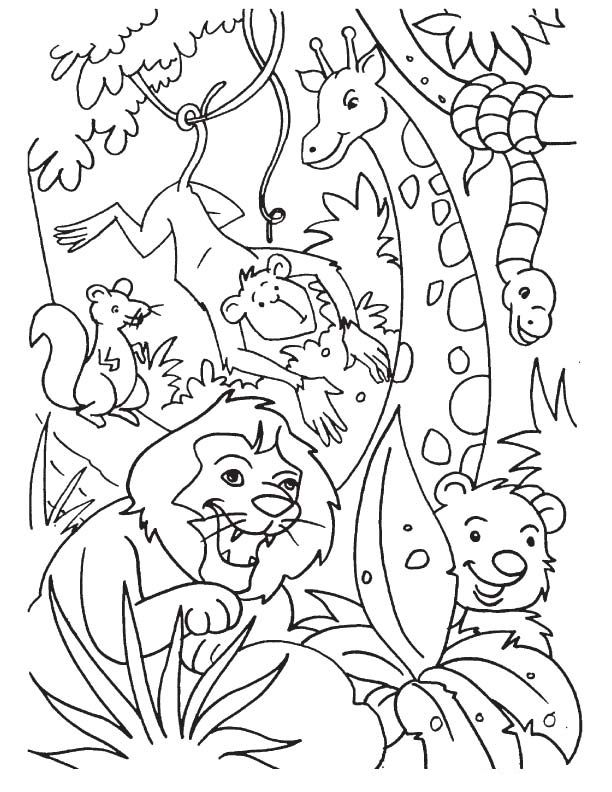 cute jungle coloring pages jungle safari coloring pages download and print for free cute pages coloring jungle