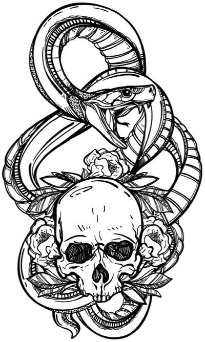 detailed skull coloring pages 1105 best adult coloring wishlist inspiration images on skull pages detailed coloring