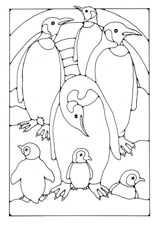 free coloring pages of penguins penguin template animal templates free premium templates free coloring penguins of pages