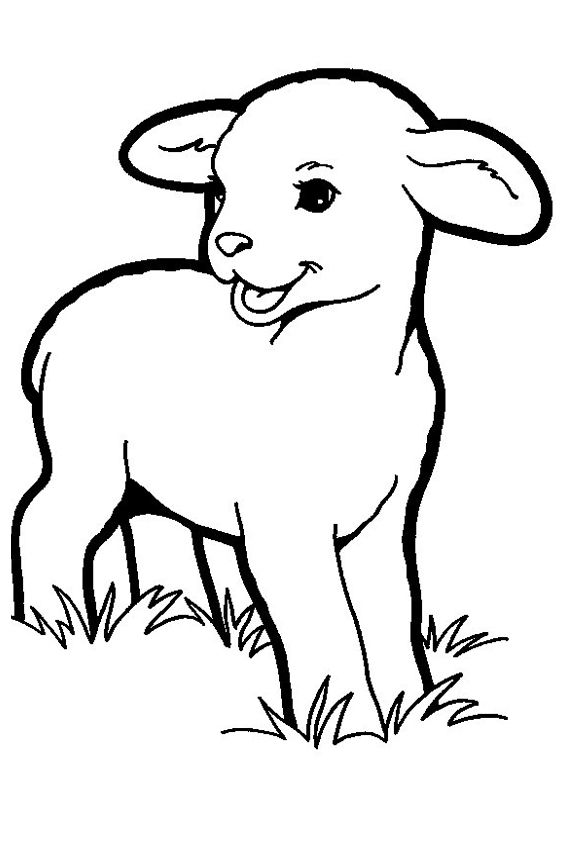 lamb coloring page sheep outline coloring page coloring home lamb coloring page 1 1
