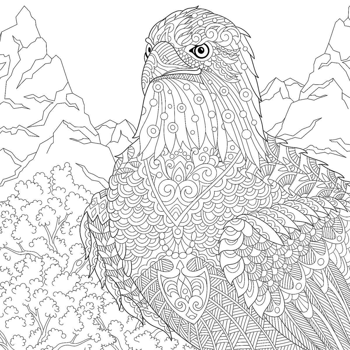4 of july coloring sheets 4th of july coloring pages let39s celebrate 4 coloring of july sheets