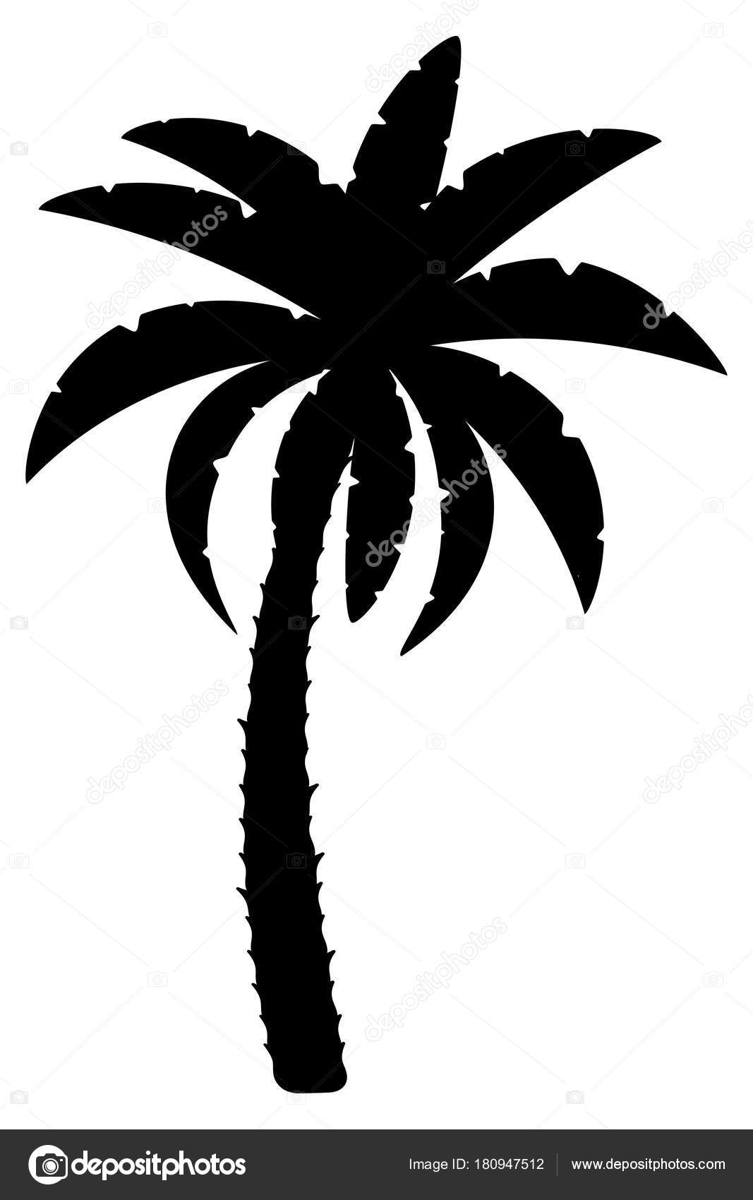 palm tree outline clipart palm tree clipart outline transparent png outline palm tree